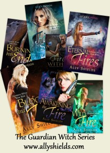 The Guardian Witch Series